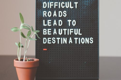 a sign that says difficult roads lead to beautiful destinations with a plant